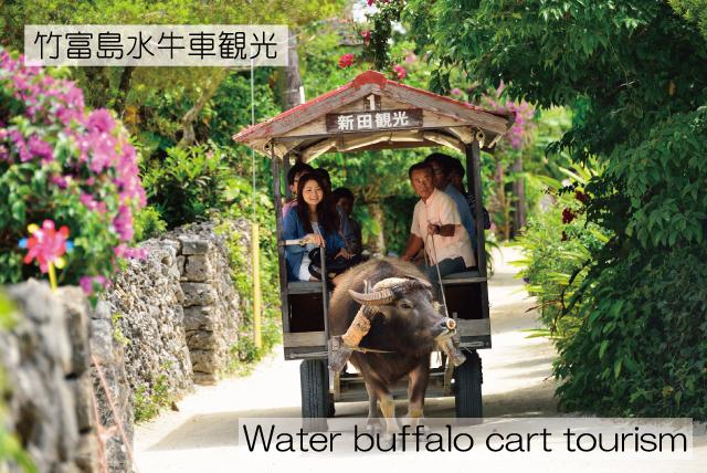 七色之旅_B5-小浜島絢麗七色海域蔗園風光+竹富島浪漫之旅(約6個小時